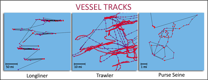 Sample Vessel Tracks