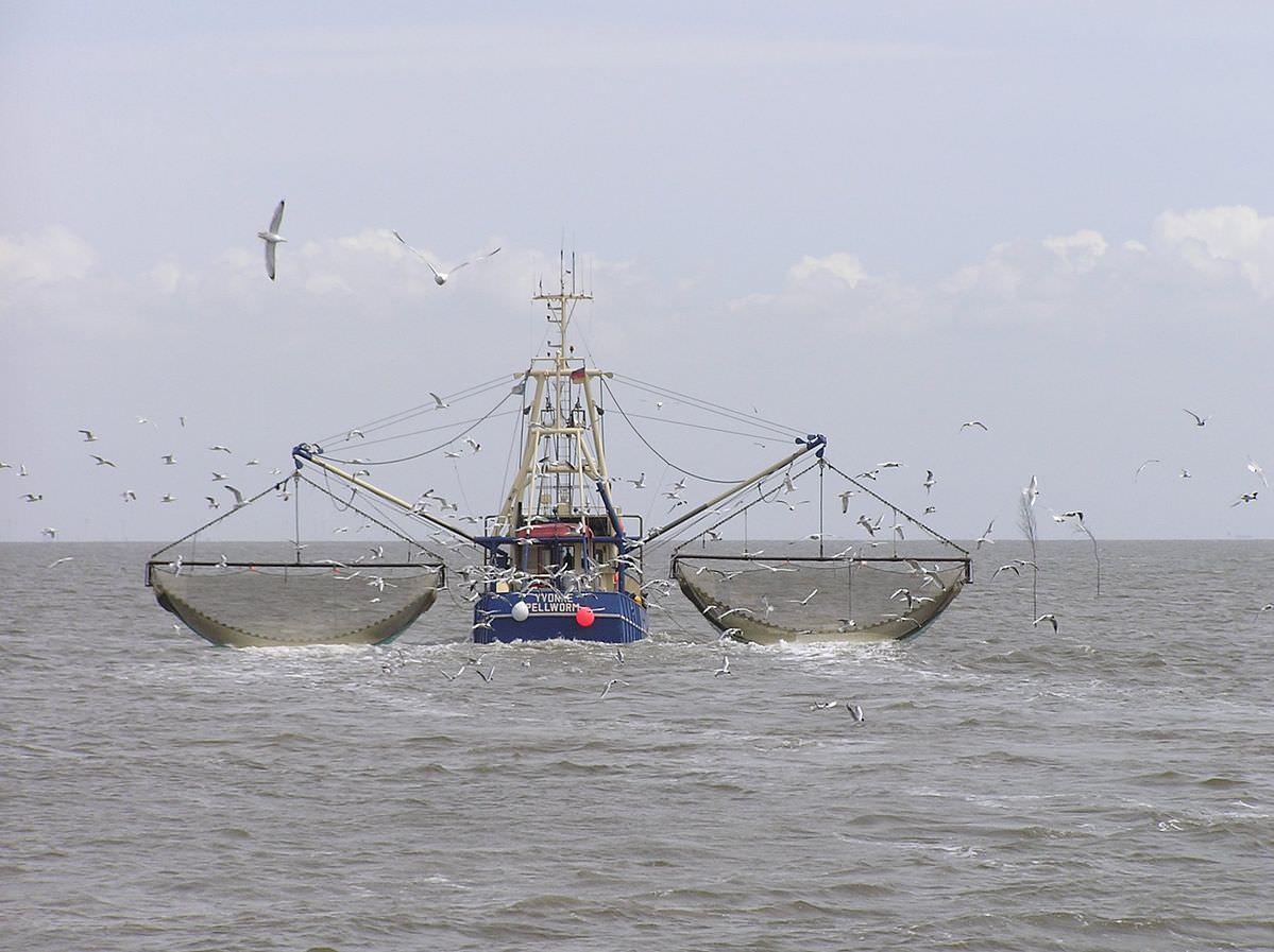 vessel Krabbenkutter