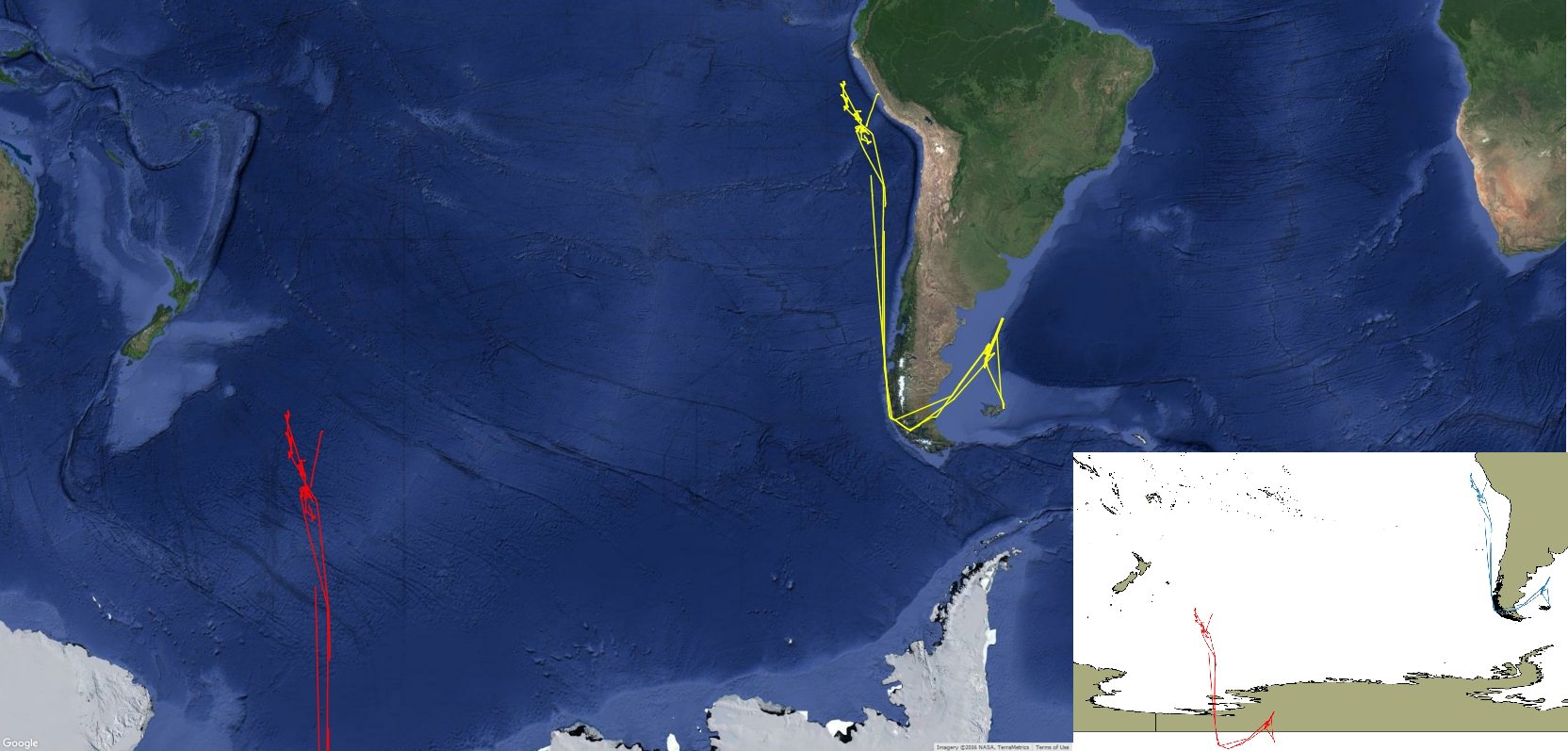 The red tracks show the broadcast position of the Lu Yan Yuan Yu 10 apparently transiting across Antarctica (inset). The yellow tracks show its true location along the coast of South America passing through the Strait of Magellan and into port at Lima, Peru.