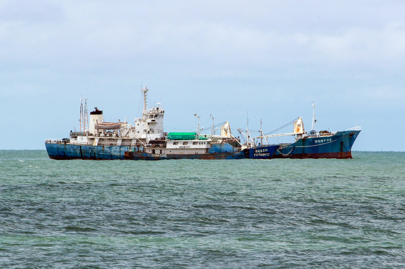 Reefer Fu Yuan Yu 88 is shown in port in Conakry, Guinea on June 30, 2016, even though the vessel was broadcasting an AIS location in the Pacific about 5000 nautical miles to the west. The vessel is shown taking catch from the Fu Yuan Yu 372 (photo: vovashap/shipspotting.com)