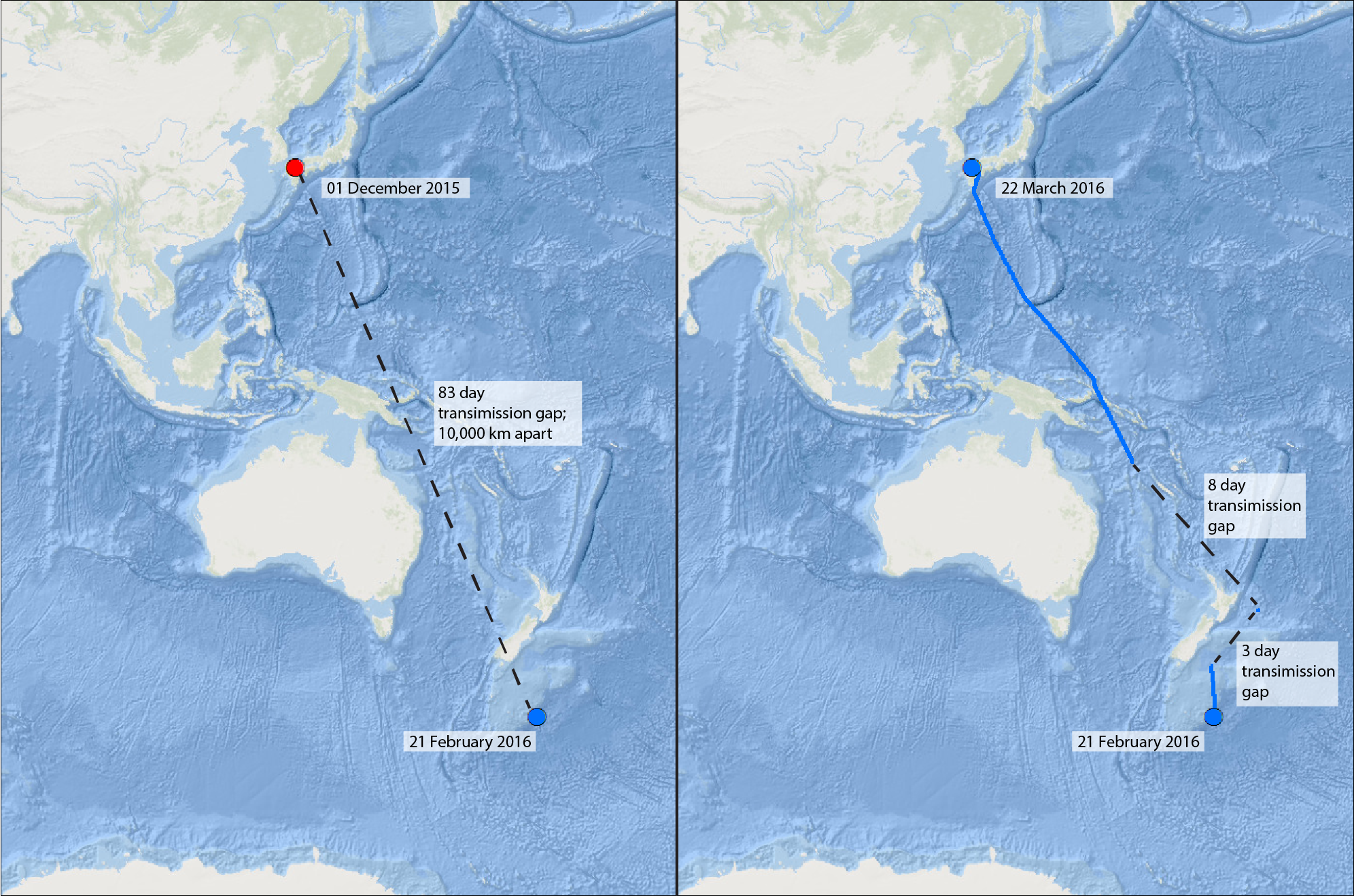 AIS vessel locations of the Shonan Maru No. 2, a known whaling vessel. The first panel shows the time and distance between the two transmitted locations on 01 December 2015 and 21 February 2016. This gap coincides with the Antarctic whaling season. The second panel shows the Shonan Maru No. 2 heading back to Japan after the 2015/2016 season.