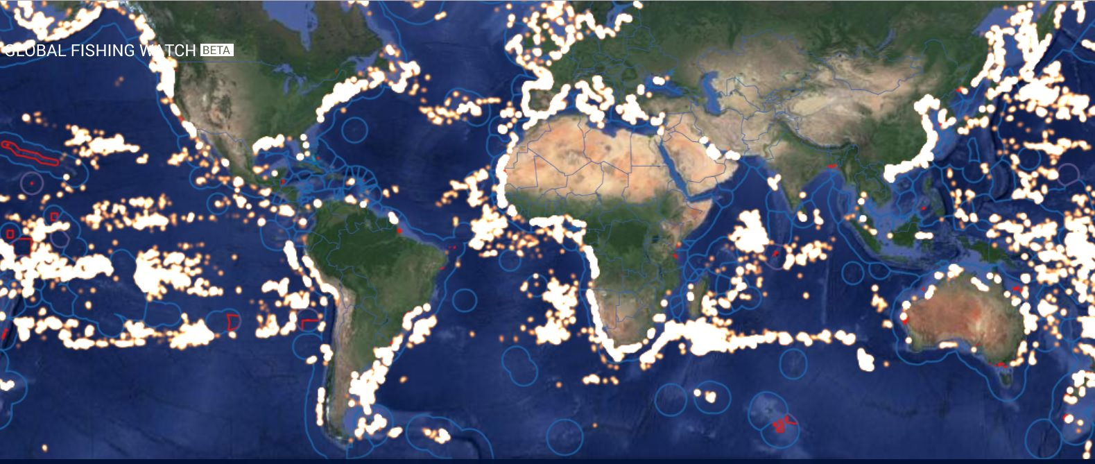 World fishing map