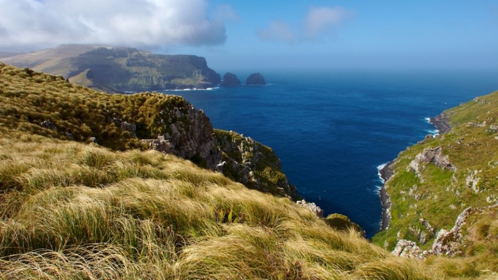 The no-take marine reserve Motu Maha surrounds the Aukland Islands.