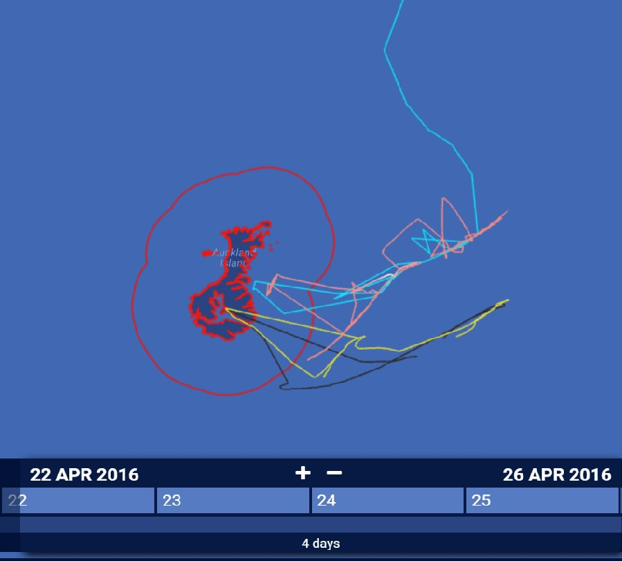 Although the Amaltal Explorer (pink track) enters the MPA without reporting it to authorities, the GOM 379 is seen crossing into the MPA (blue track) along with her just hours after the Drysdale and Albtross II reached the safety of the inland bays. Those vessels had notified authorities.