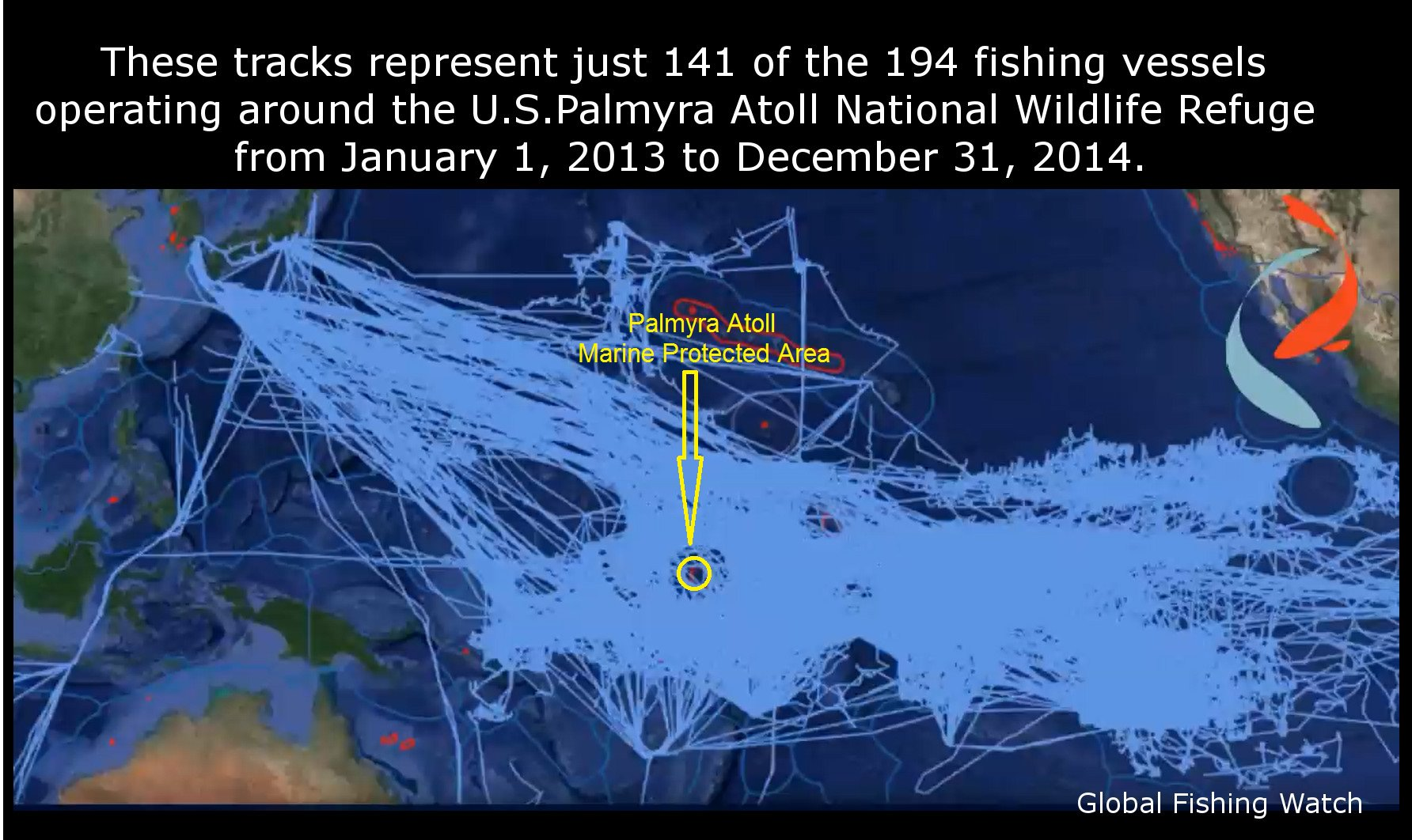 Using the Global Fishing Watch Map, we are able to see the tracks of fishing vessels operating around U.S. Palmyra Atoll National Wildlife Refuge. /Credit Global Fishing Watch