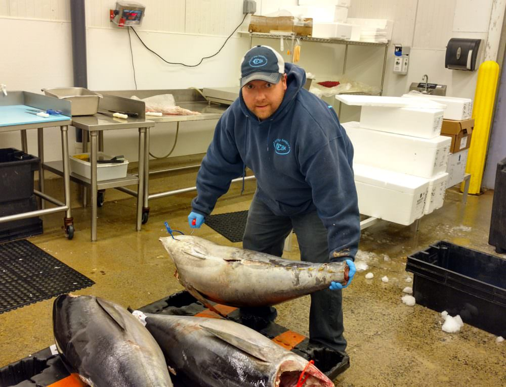 East Bay Seafood Company Pursues Traceability