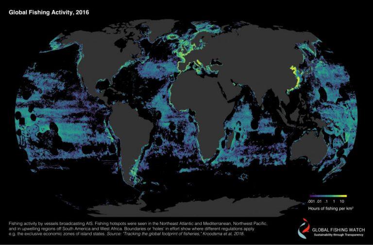 Global Fishing Activity 2016