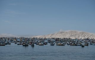Anchovy boats peru