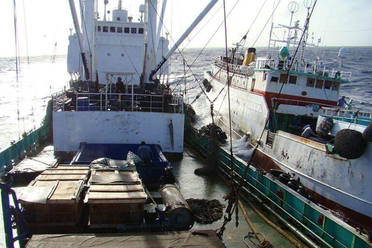 Transshipment reform