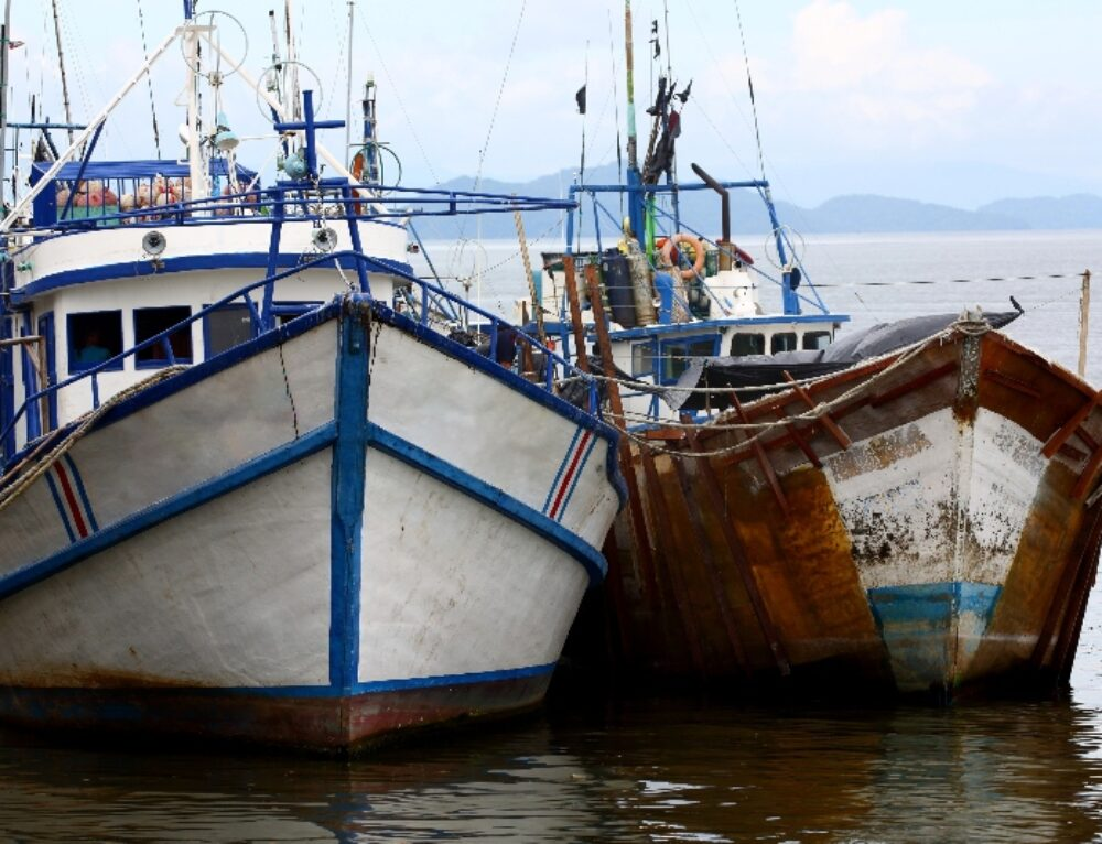 Latin America Highlights Transparency as Essential in Tackling Illegal Fishing