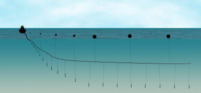 fishing longline draw