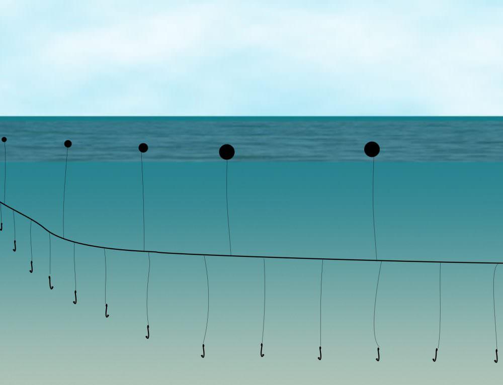 Predicting the distribution of the high seas longline fleet