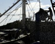 Following Forced Labor in the World's Fishing Fleets