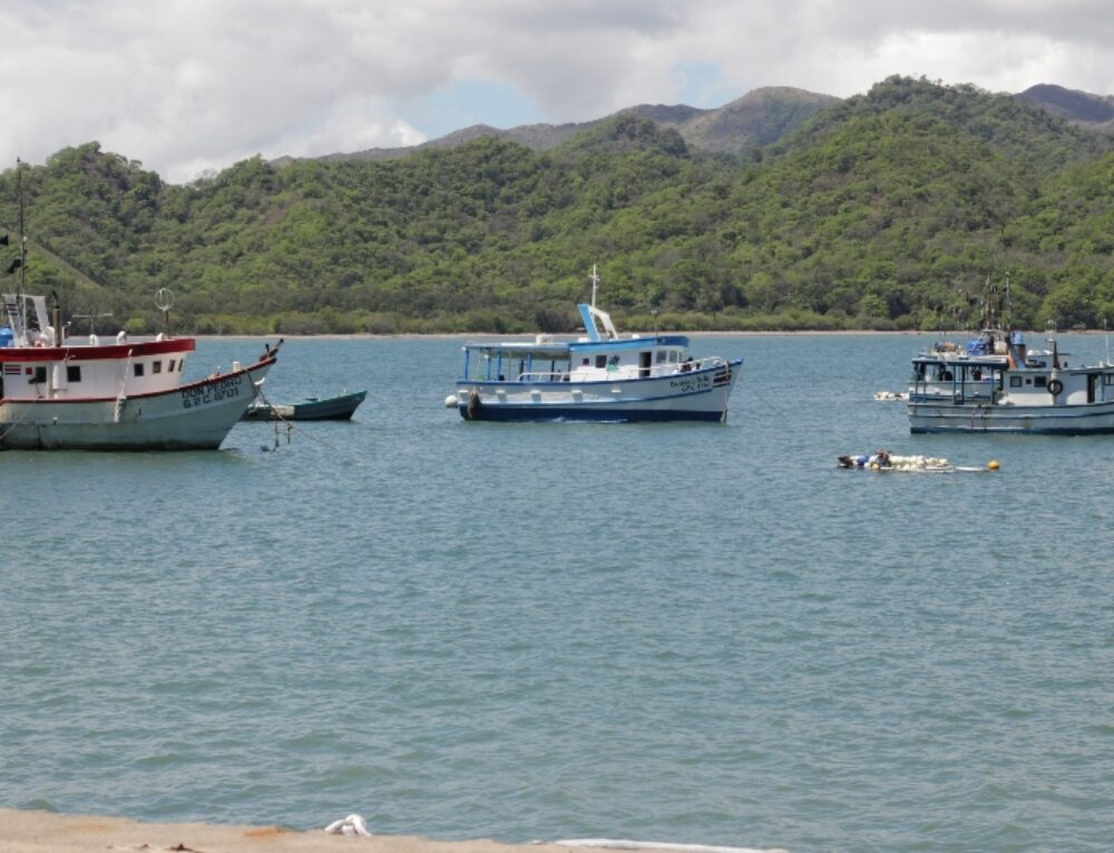 Costa Rica and Global Fishing Watch Sign Agreement to Give Greater Transparency to Fishing Activity