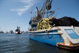 Fisheries activity