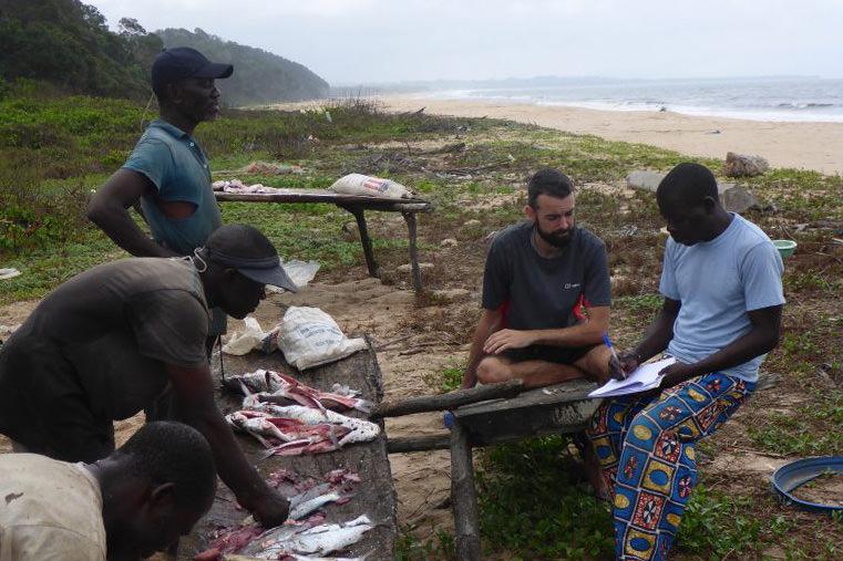 Fisher surveys