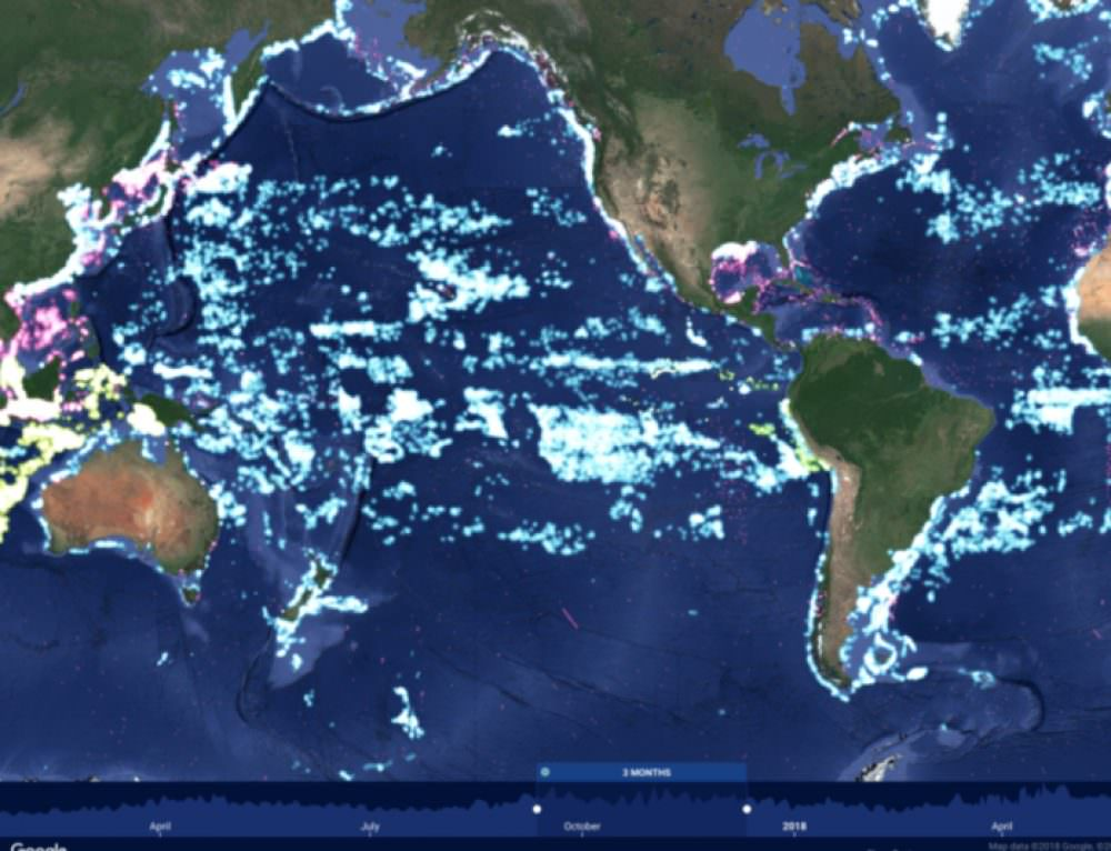 Match-making at sea: how to find fishing fleets