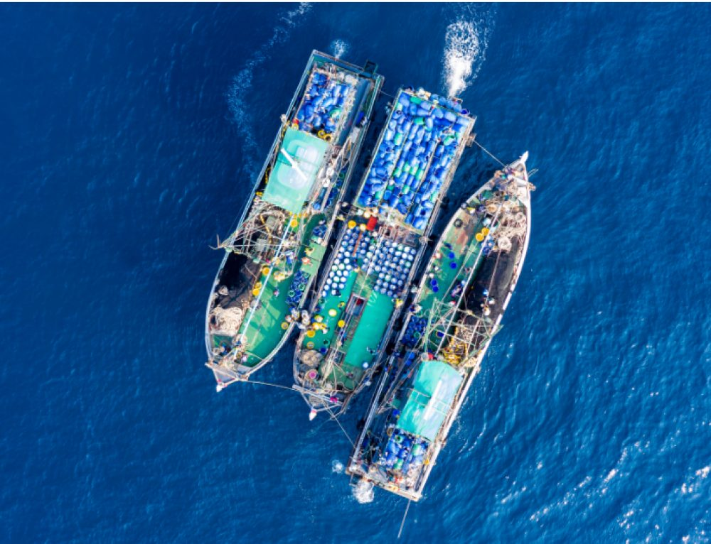 Illuminating global fishing activity with satellite AIS