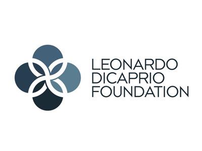 leonardo dicaprio foundation