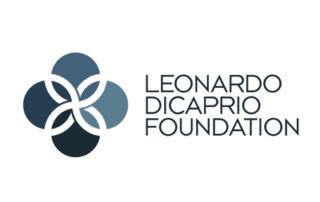 leonardo dicaprio foundation GFW