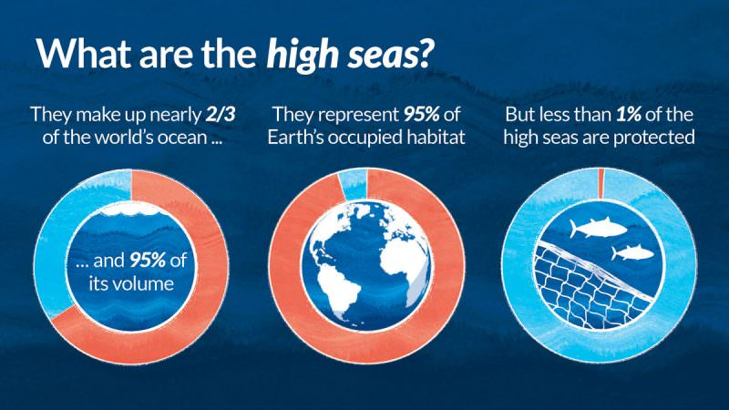 What are the high seas?