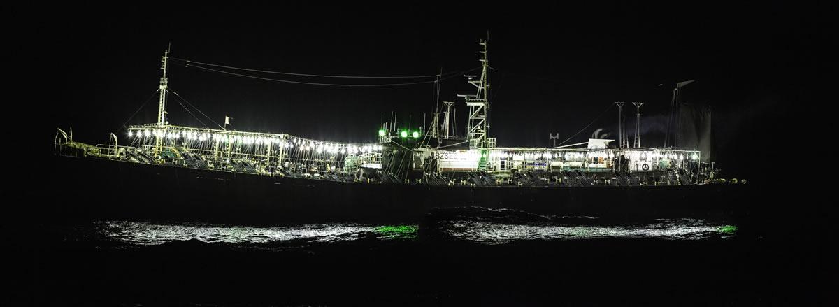 Distant water industrial vessels target jumbo squid in the Southeast Pacific Ocean