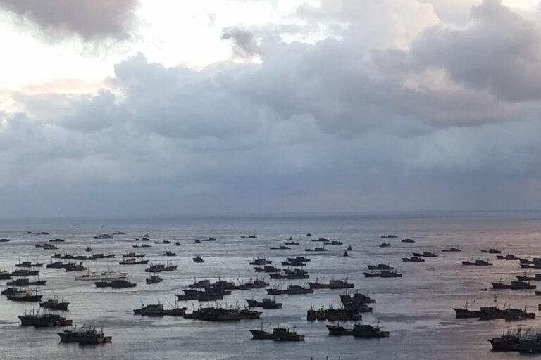 Illegal fishing by dark fleets in north korea